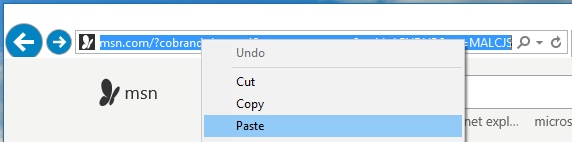 Paste into IE