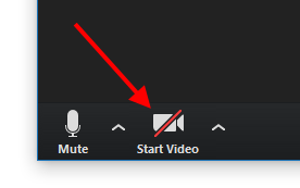 """Start Video"" icon to turn on camera"