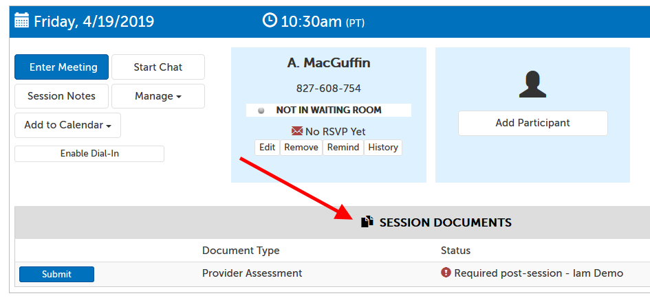 """Session Documents"" section, showing a document called ""Provider Assessment"" for the provider to fill out post-session"